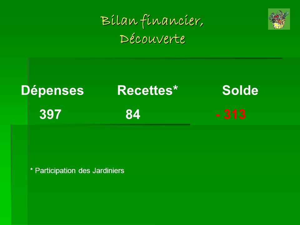 Bilan financier, Découverte