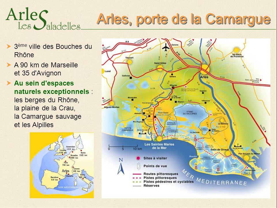 Arles, porte de la Camargue