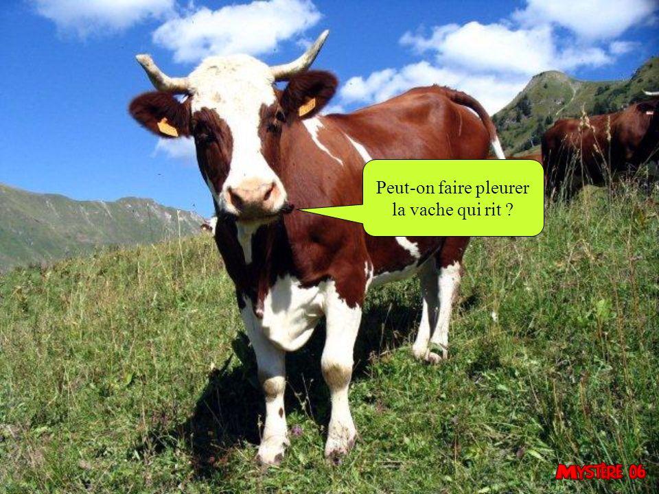 Peut-on faire pleurer la vache qui rit 11
