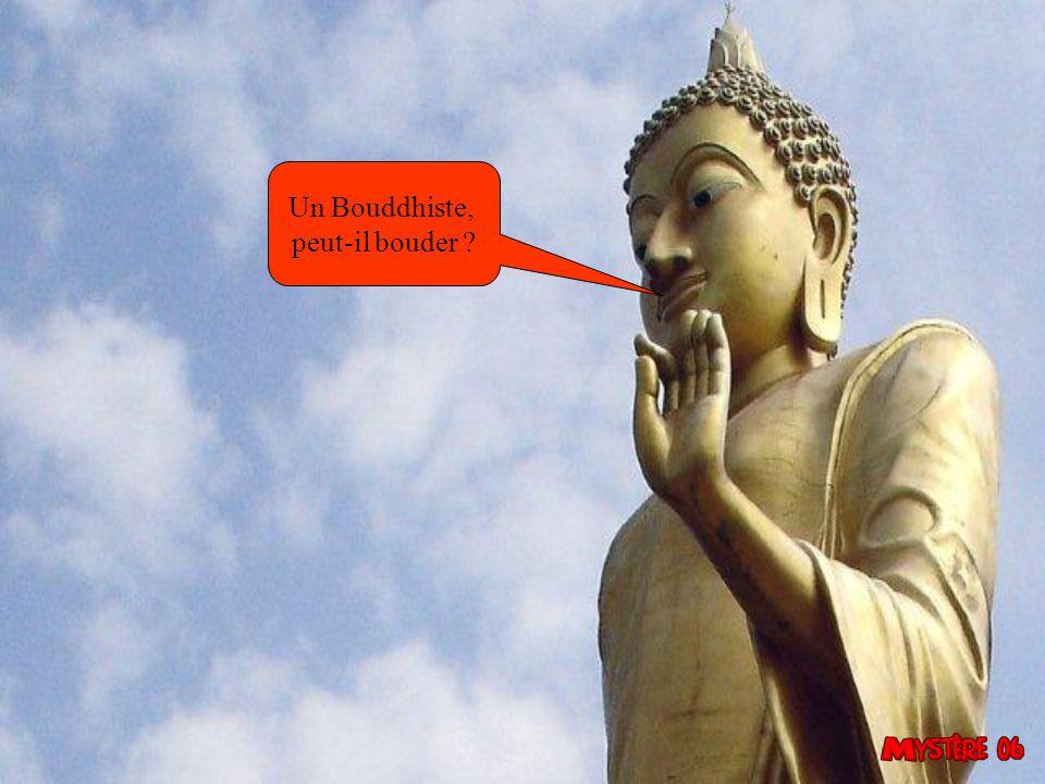 Un Bouddhiste, peut-il bouder 26