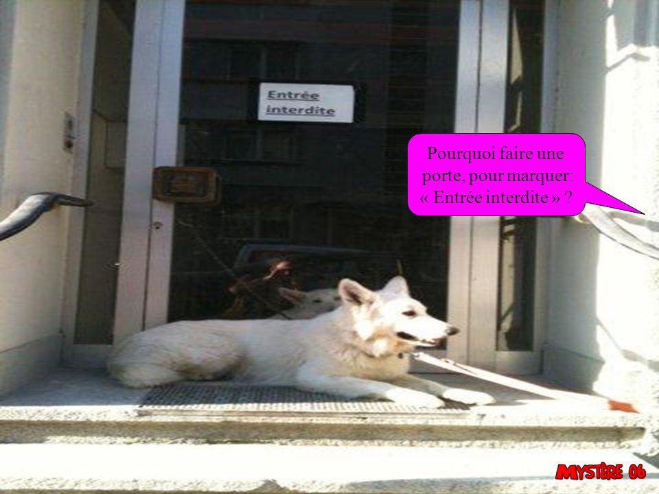 Pourquoi faire une porte, pour marquer: « Entrée interdite » 31