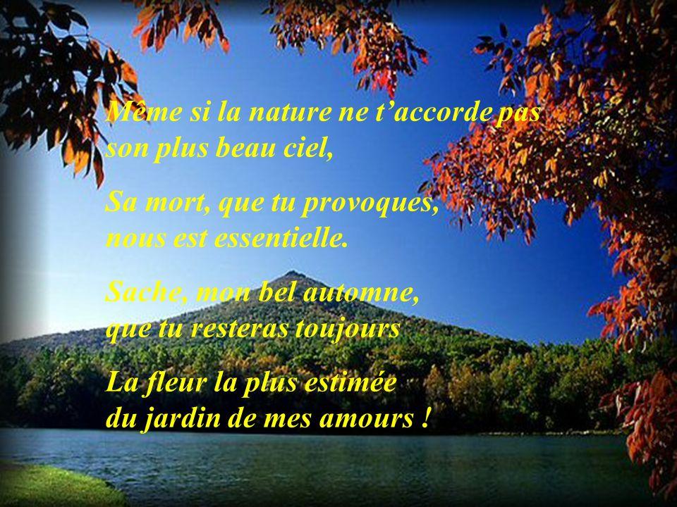 Même si la nature ne t'accorde pas son plus beau ciel,