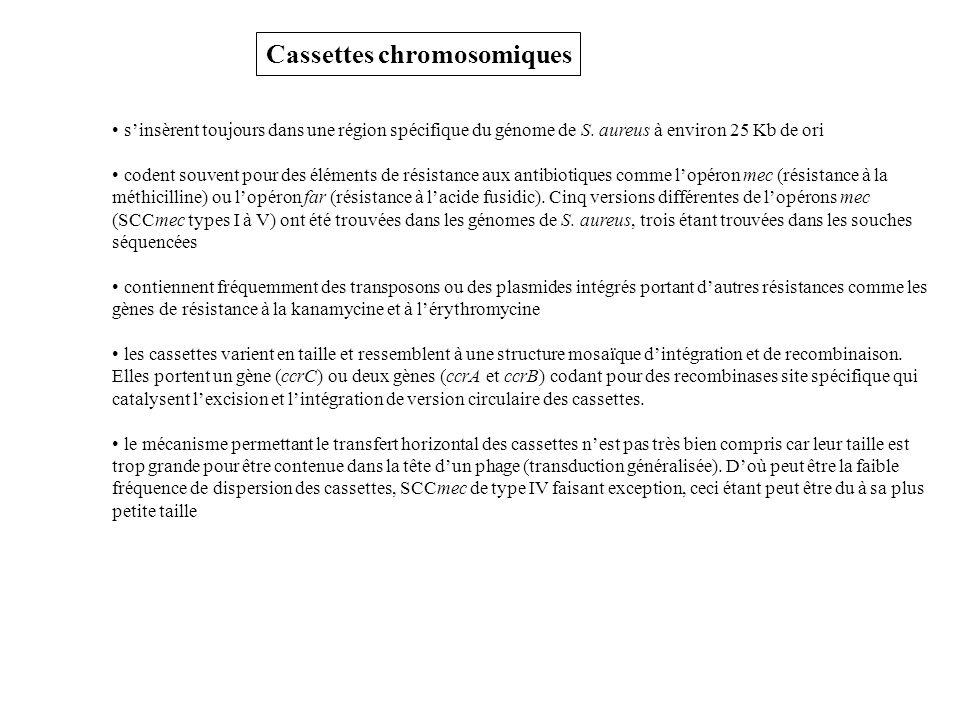 Cassettes chromosomiques