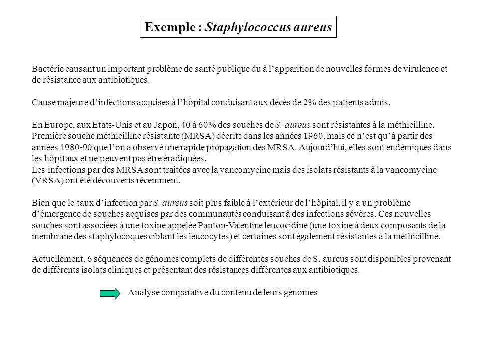 Exemple : Staphylococcus aureus