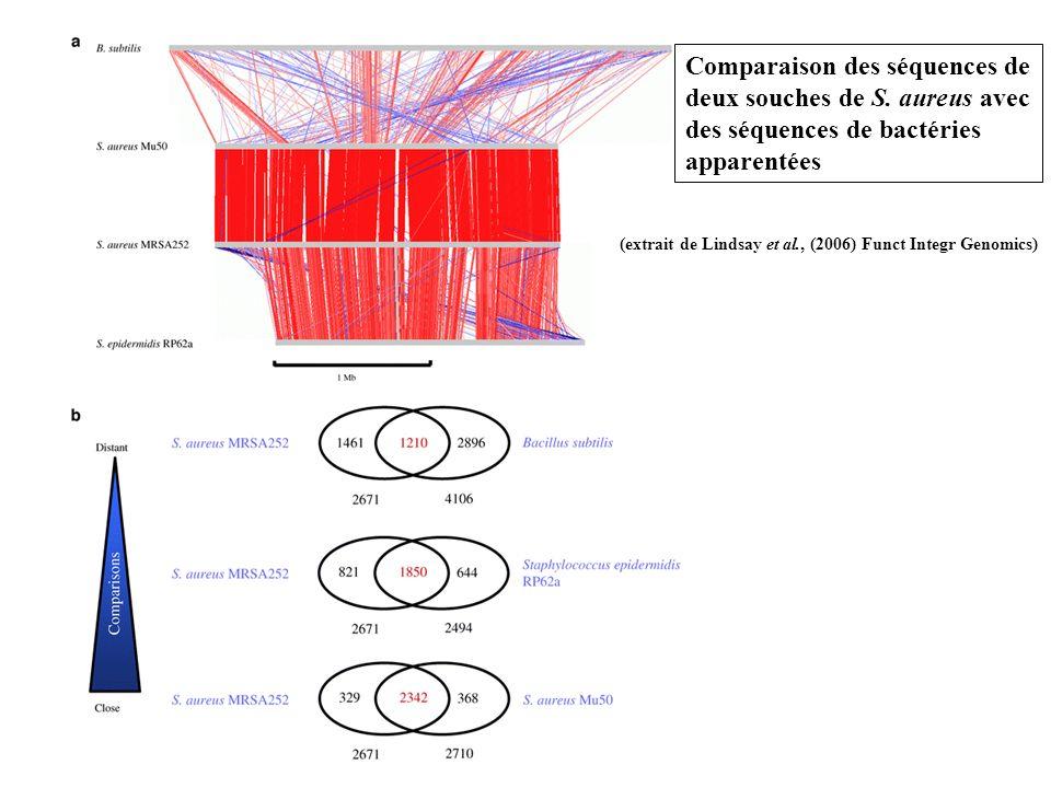Comparaison des séquences de deux souches de S