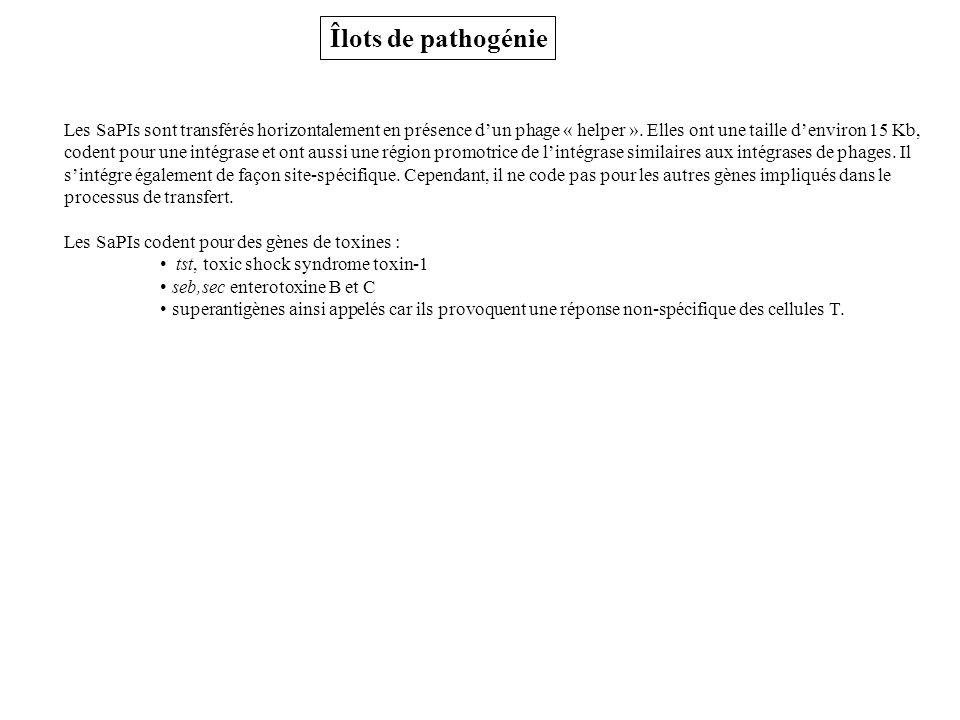 Îlots de pathogénie