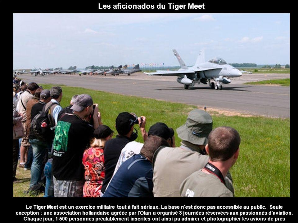 Les aficionados du Tiger Meet
