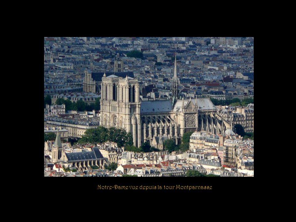 Notre-Dame vue depuis la tour Montparnasse