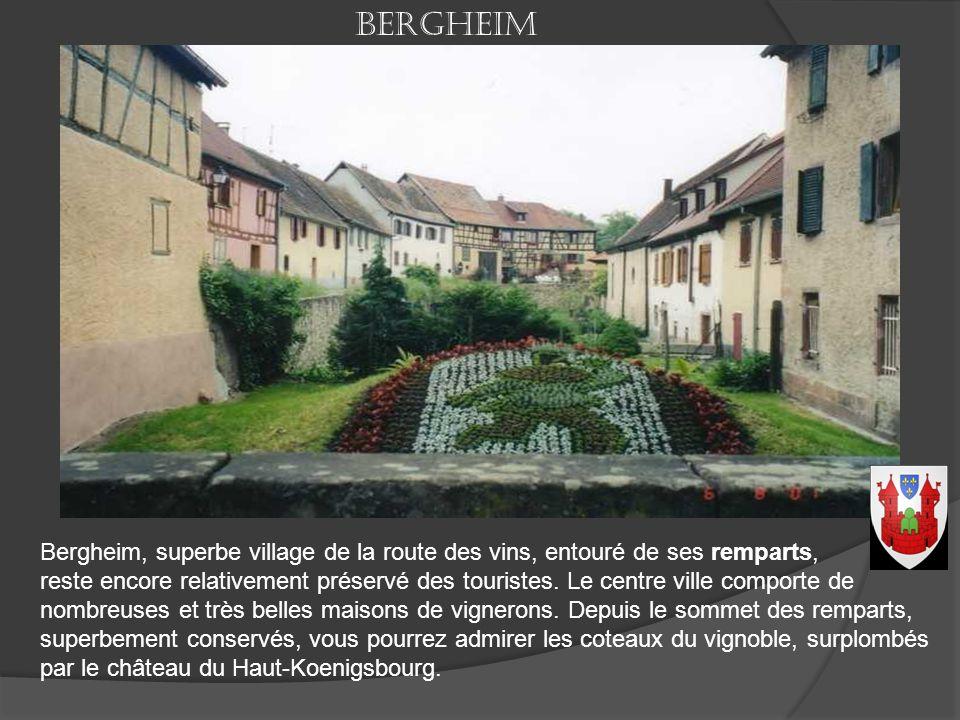Bergheim Bergheim, superbe village de la route des vins, entouré de ses remparts,