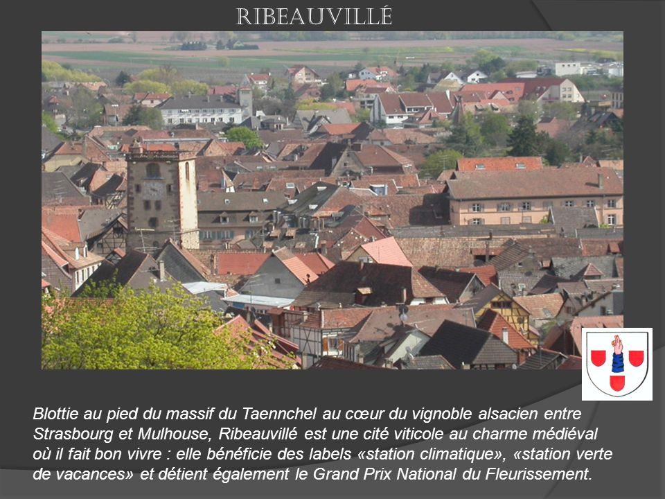 Ribeauvillé Blottie au pied du massif du Taennchel au cœur du vignoble alsacien entre.