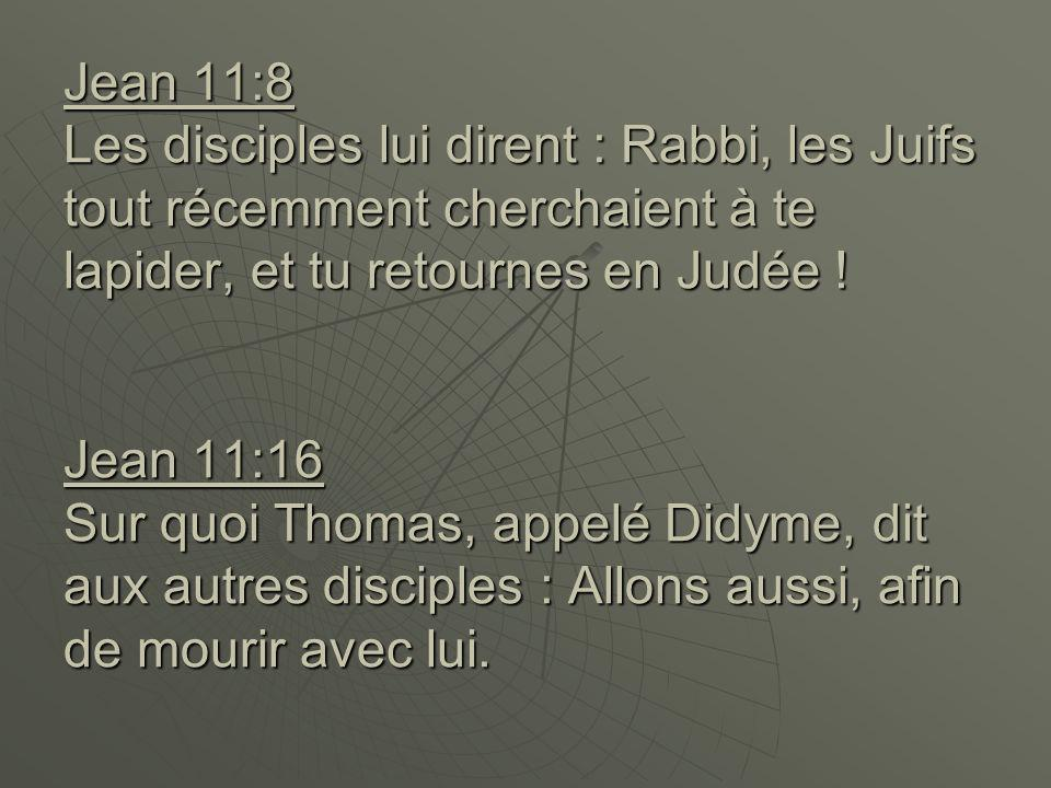 Jean 11:8 Les disciples lui dirent : Rabbi, les Juifs tout récemment cherchaient à te lapider, et tu retournes en Judée .
