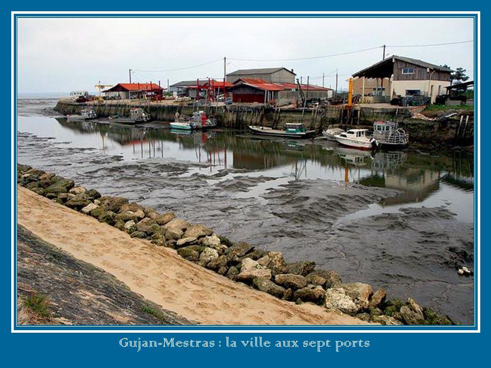Gujan-Mestras : la ville aux sept ports