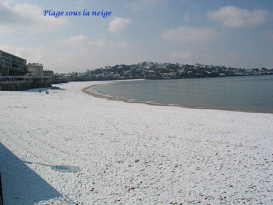 Plage sous la neige