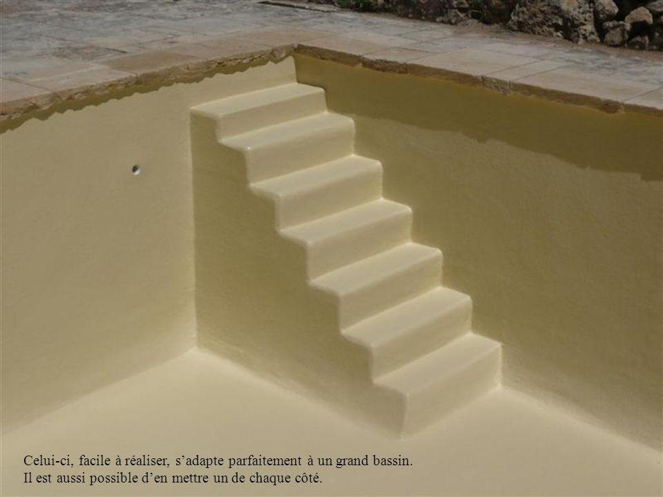 Celui-ci, facile à réaliser, s'adapte parfaitement à un grand bassin.