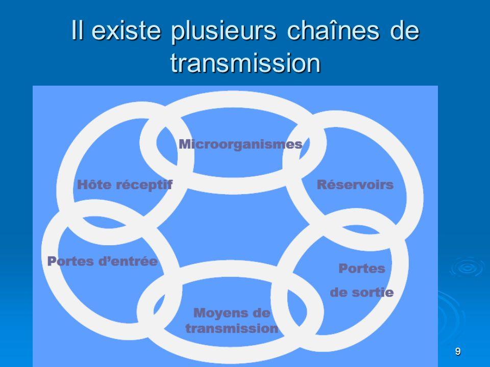 Il existe plusieurs chaînes de transmission
