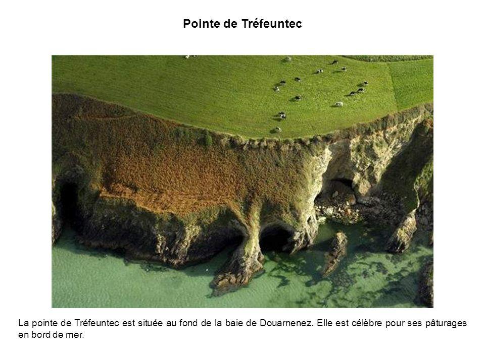 Pointe de Tréfeuntec La pointe de Tréfeuntec est située au fond de la baie de Douarnenez.
