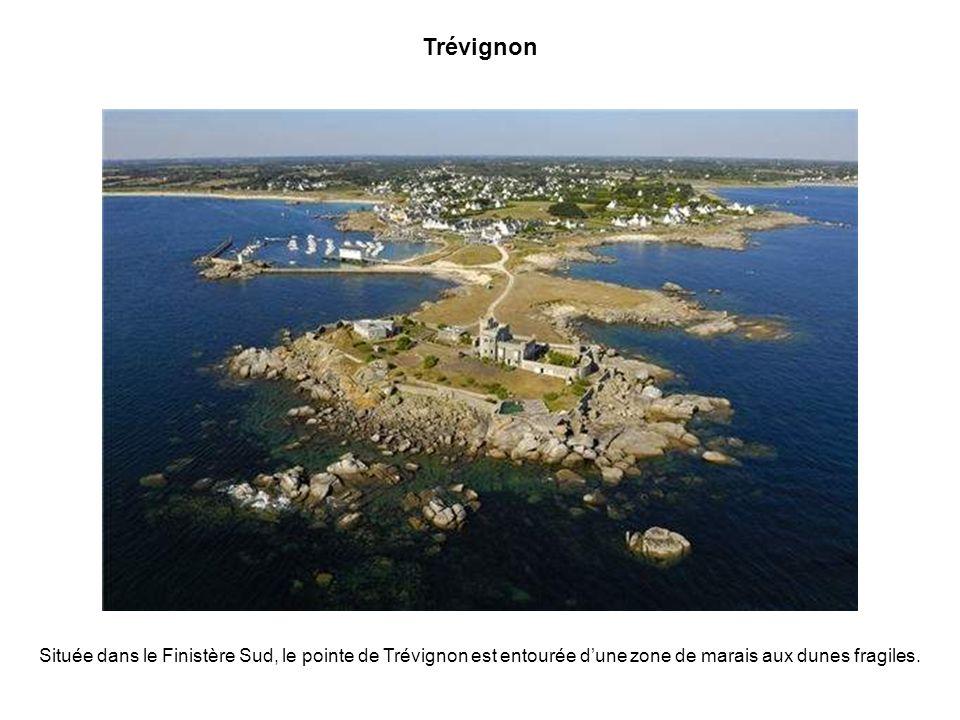 Trévignon Située dans le Finistère Sud, le pointe de Trévignon est entourée d'une zone de marais aux dunes fragiles.