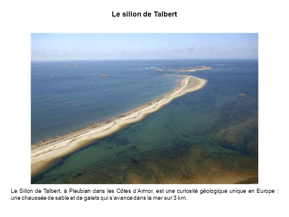 Le sillon de Talbert