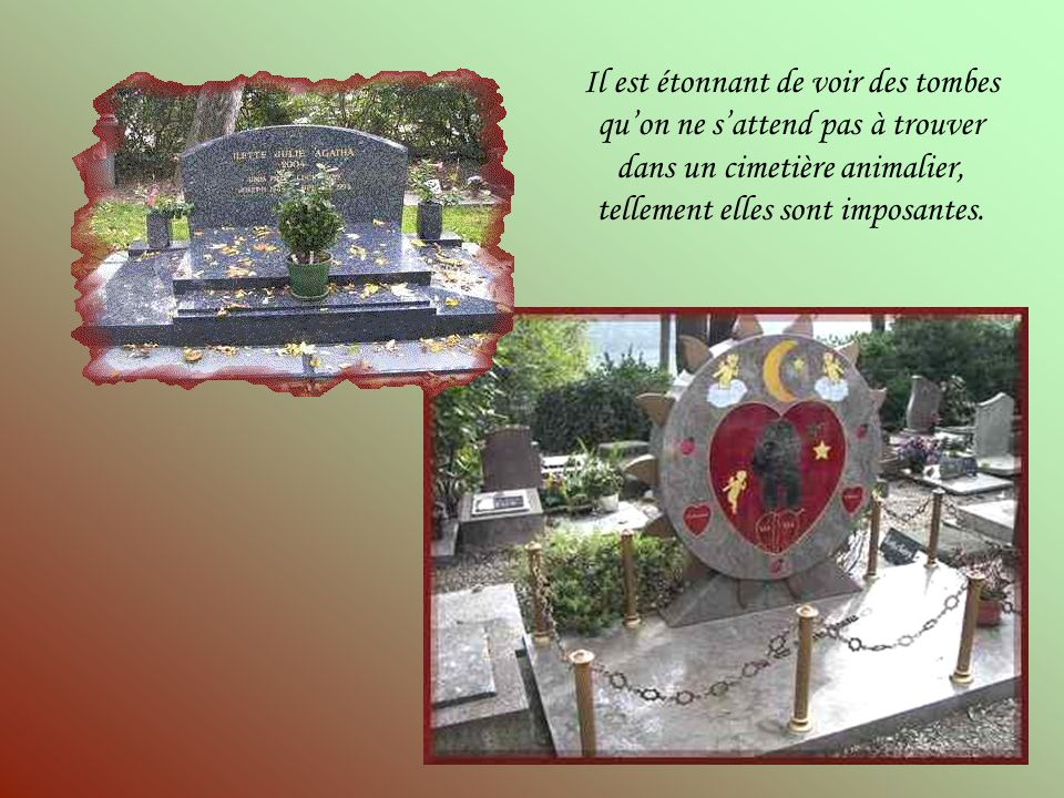 Il est étonnant de voir des tombes qu'on ne s'attend pas à trouver dans un cimetière animalier, tellement elles sont imposantes.