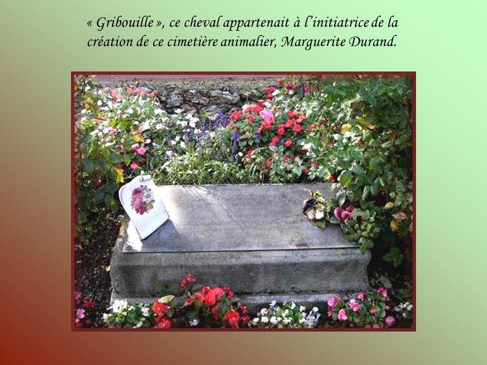 « Gribouille », ce cheval appartenait à l'initiatrice de la création de ce cimetière animalier, Marguerite Durand.