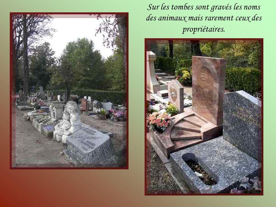 Sur les tombes sont gravés les noms des animaux mais rarement ceux des propriétaires.