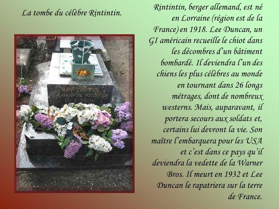 La tombe du célèbre Rintintin.