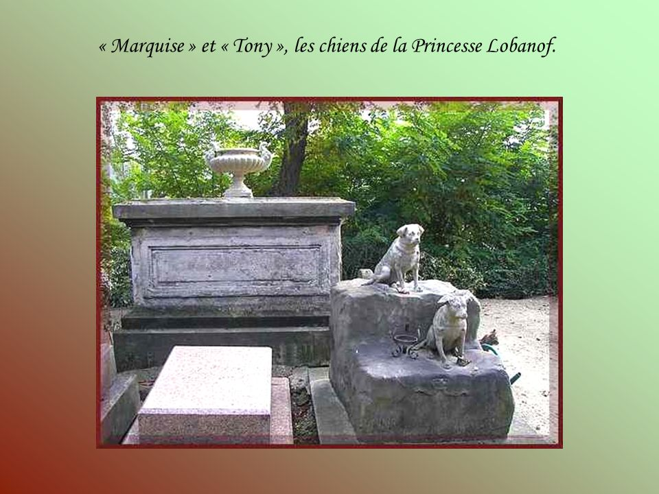 « Marquise » et « Tony », les chiens de la Princesse Lobanof.