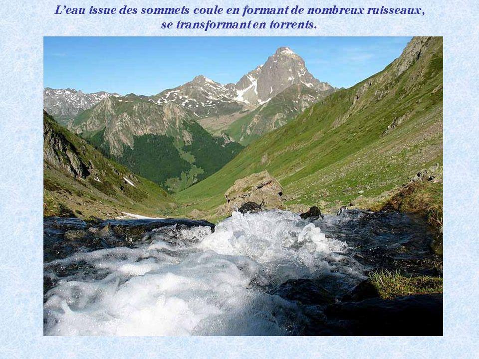 L'eau issue des sommets coule en formant de nombreux ruisseaux,