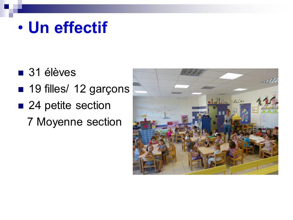 Un effectif 31 élèves 19 filles/ 12 garçons 24 petite section