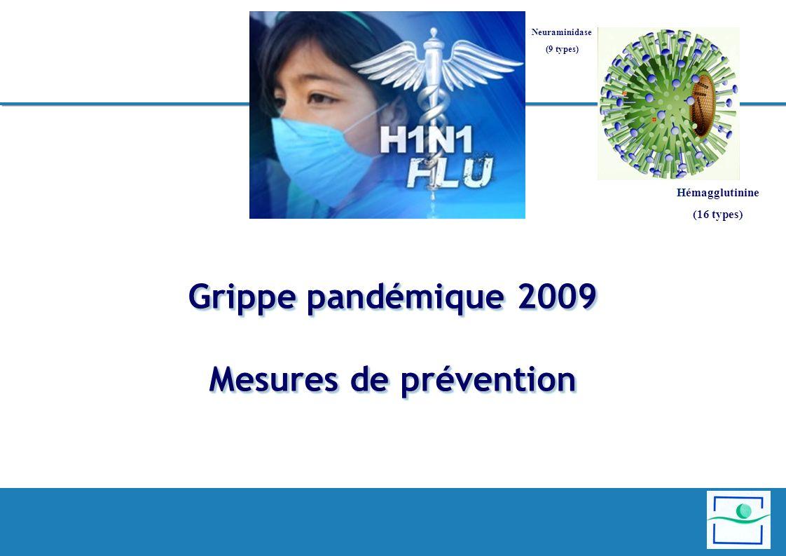Grippe pandémique 2009 Mesures de prévention