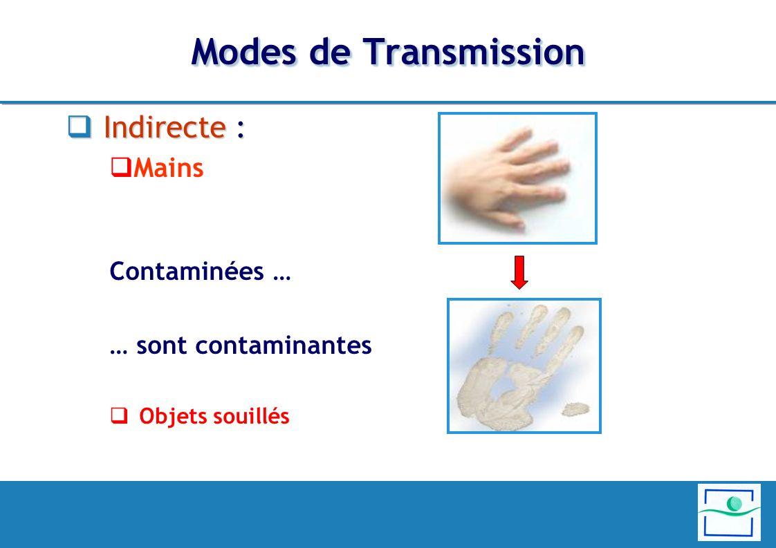 Modes de Transmission Indirecte : Mains Contaminées …