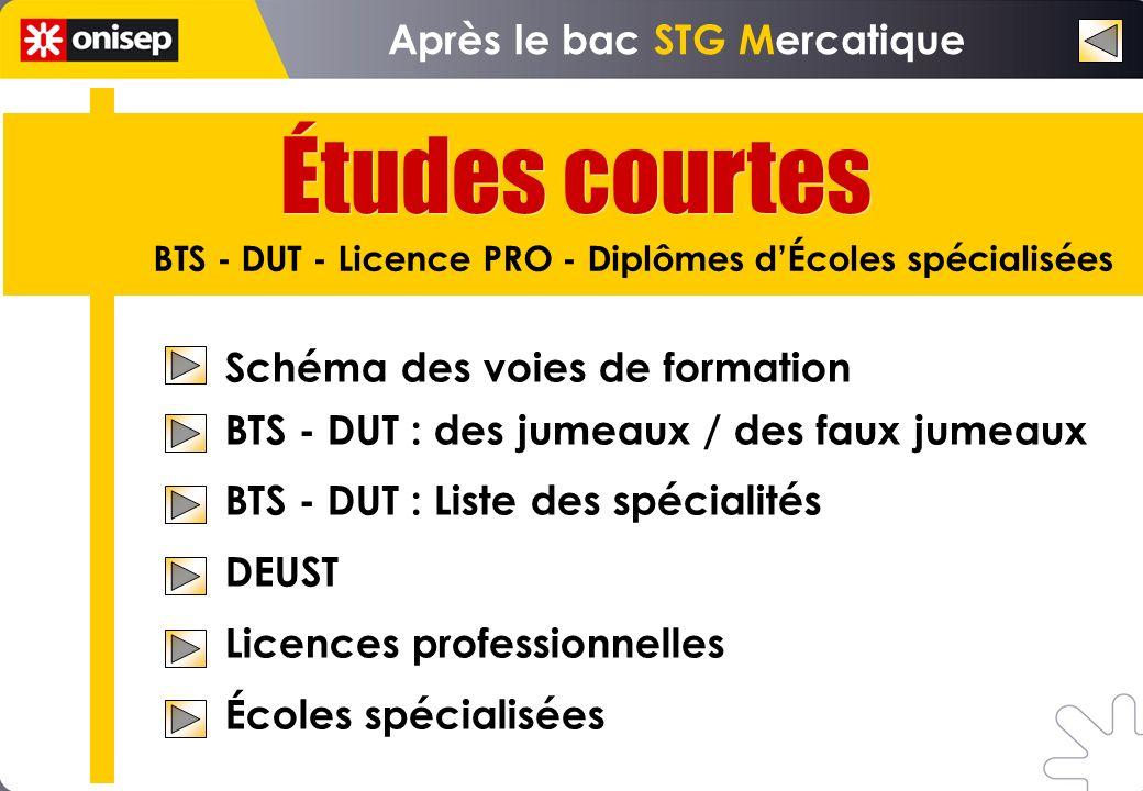 Études courtes Après le bac STG Mercatique