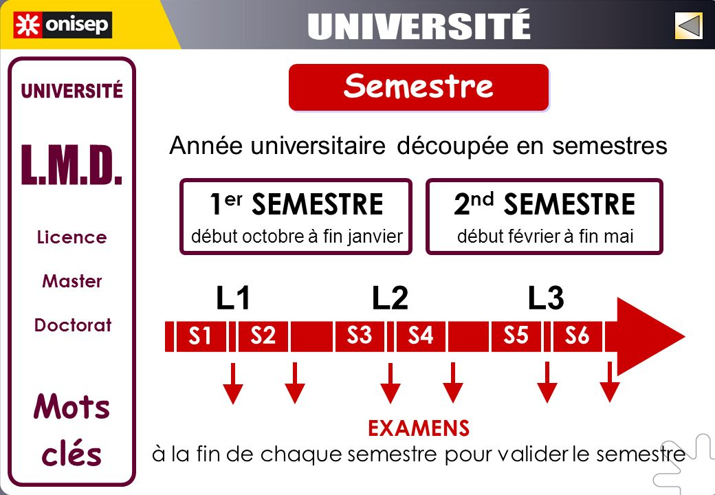UNIVERSITÉ Semestre UNIVERSITÉ L.M.D. L1 L2 L3 Mots clés 1er SEMESTRE
