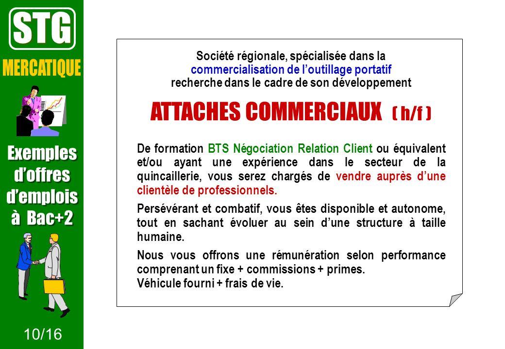 STG MERCATIQUE ATTACHES COMMERCIAUX ( h/f ) Exemples d'offres