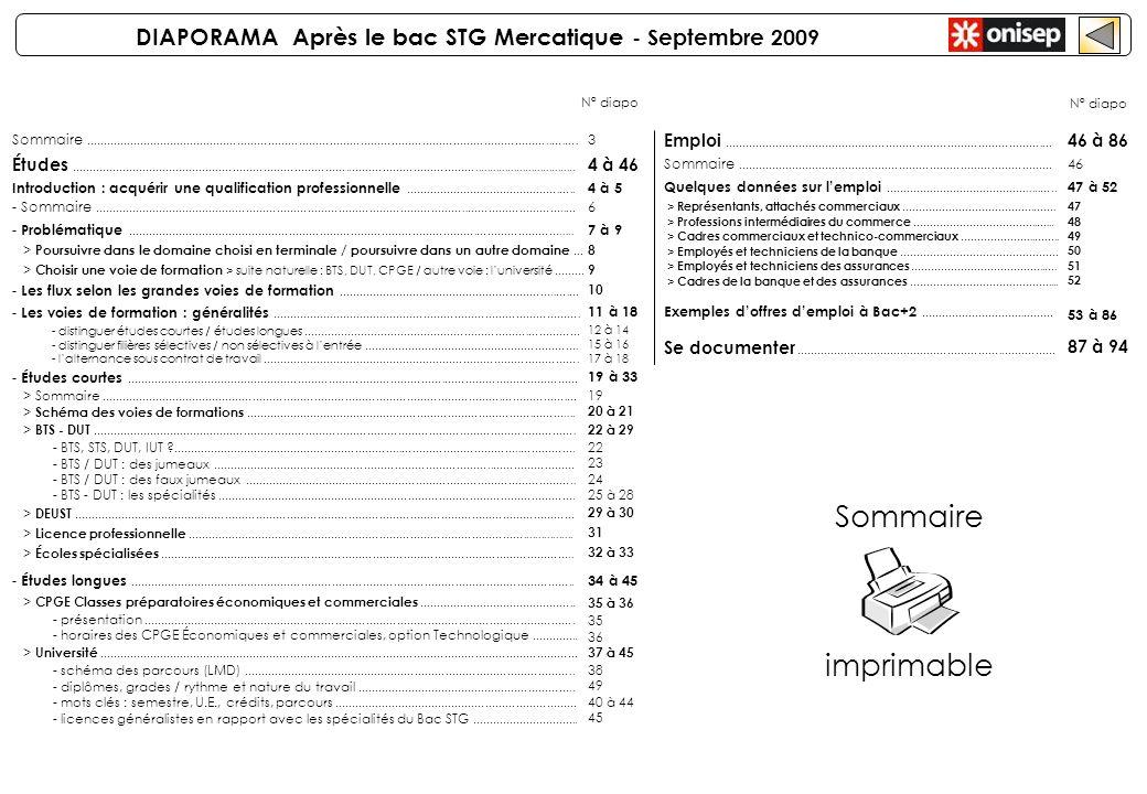 DIAPORAMA Après le bac STG Mercatique - Septembre 2009