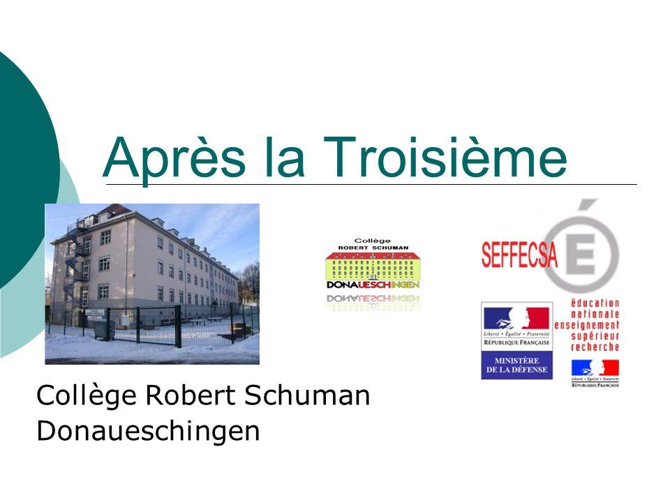 Collège Robert Schuman Donaueschingen