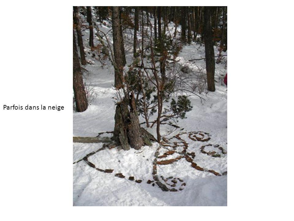 Parfois dans la neige