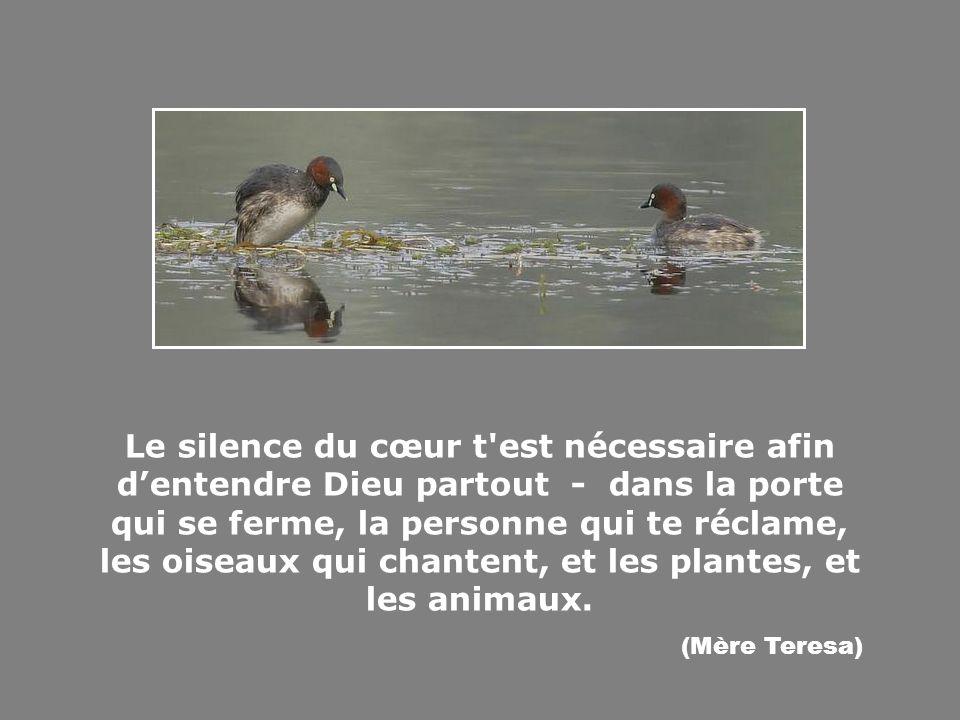 Le silence du cœur t est nécessaire afin d'entendre Dieu partout - dans la porte qui se ferme, la personne qui te réclame, les oiseaux qui chantent, et les plantes, et les animaux.