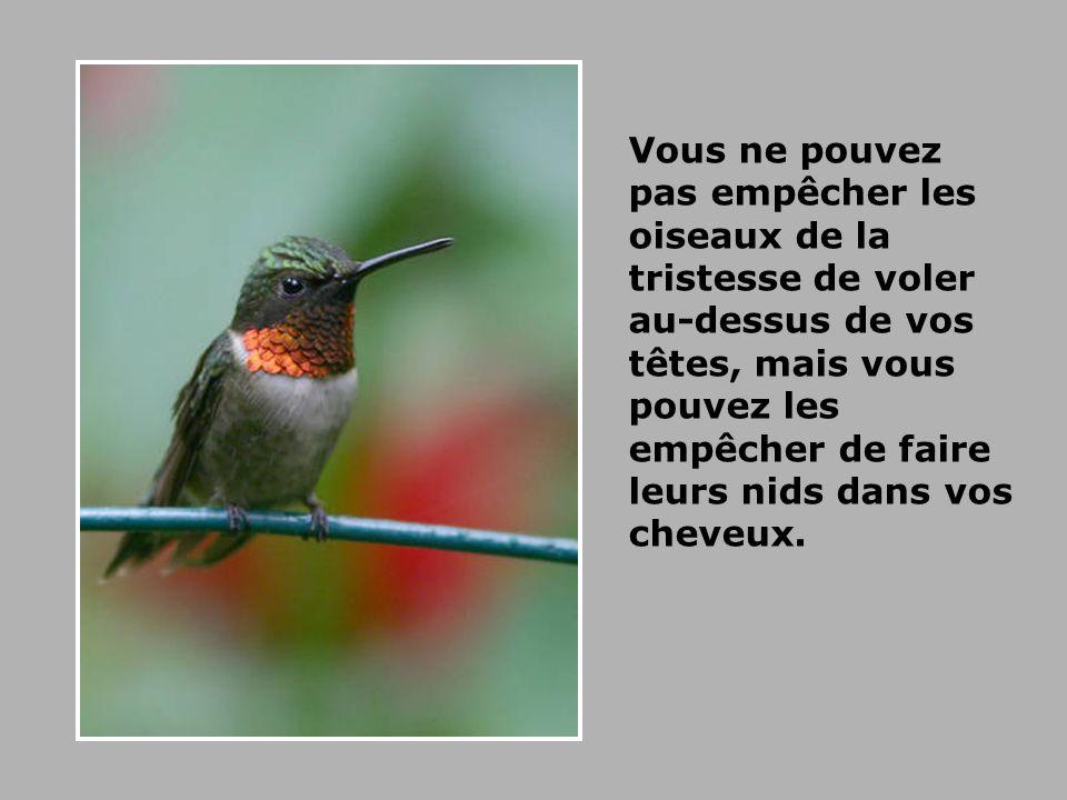 Vous ne pouvez pas empêcher les oiseaux de la tristesse de voler au-dessus de vos têtes, mais vous pouvez les empêcher de faire leurs nids dans vos cheveux.