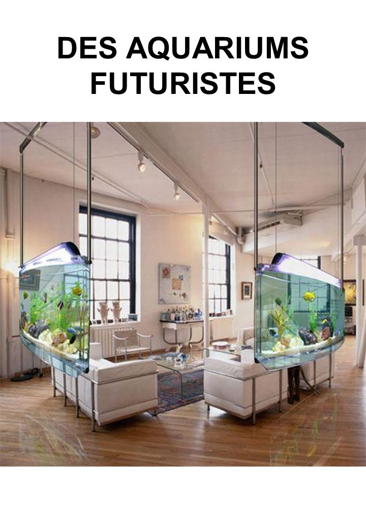 DES AQUARIUMS FUTURISTES