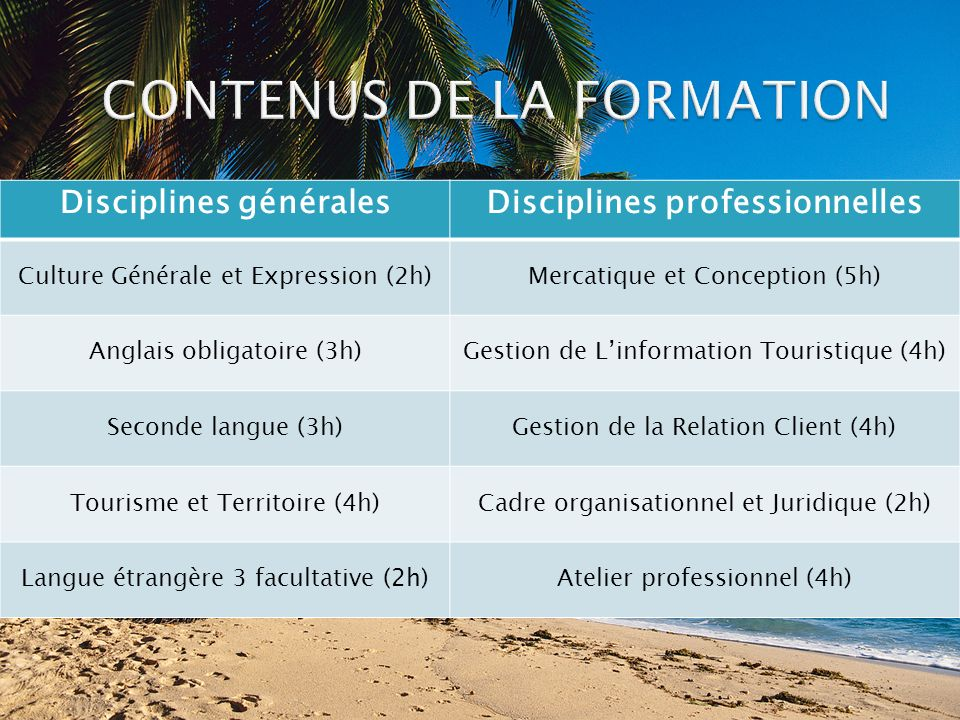 CONTENUS DE LA FORMATION