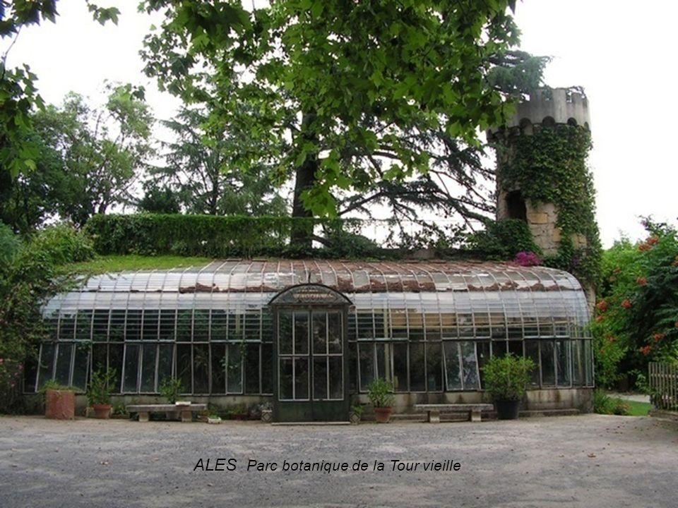 ALES Parc botanique de la Tour vieille
