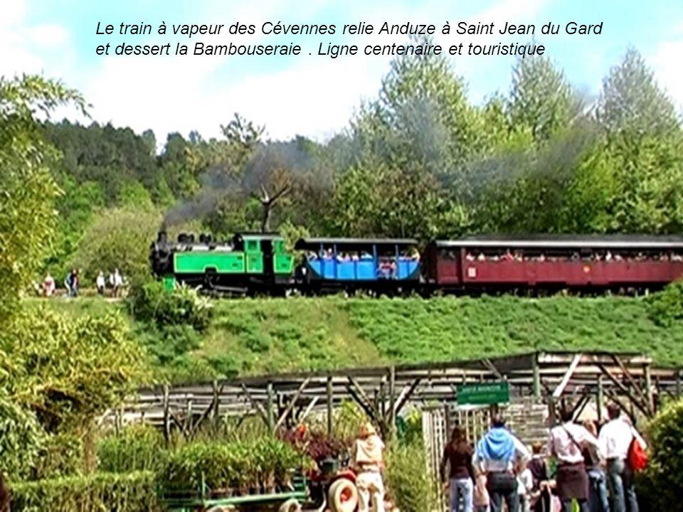 Le train à vapeur des Cévennes relie Anduze à Saint Jean du Gard et dessert la Bambouseraie . Ligne centenaire et touristique