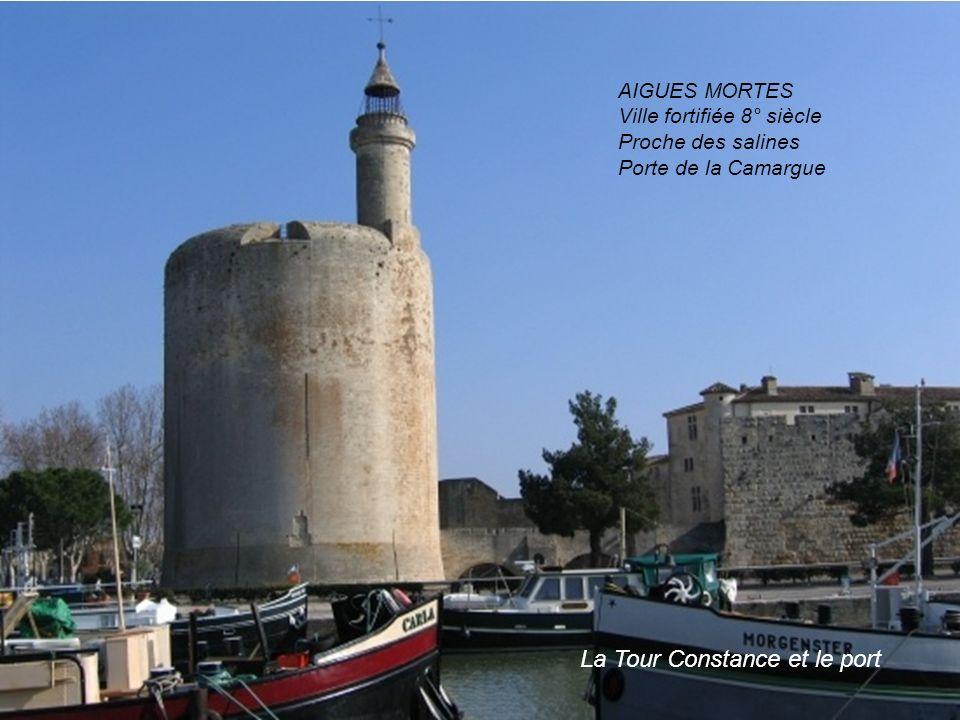 La Tour Constance et le port