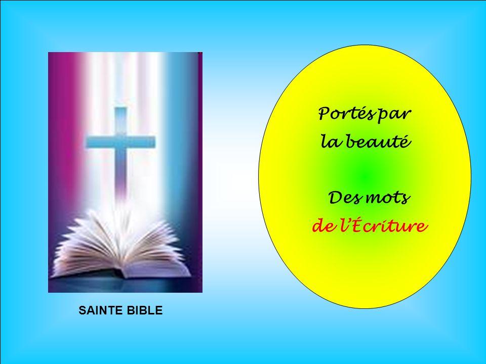 Portés par la beauté . Des mots de l'Écriture . SAINTE BIBLE