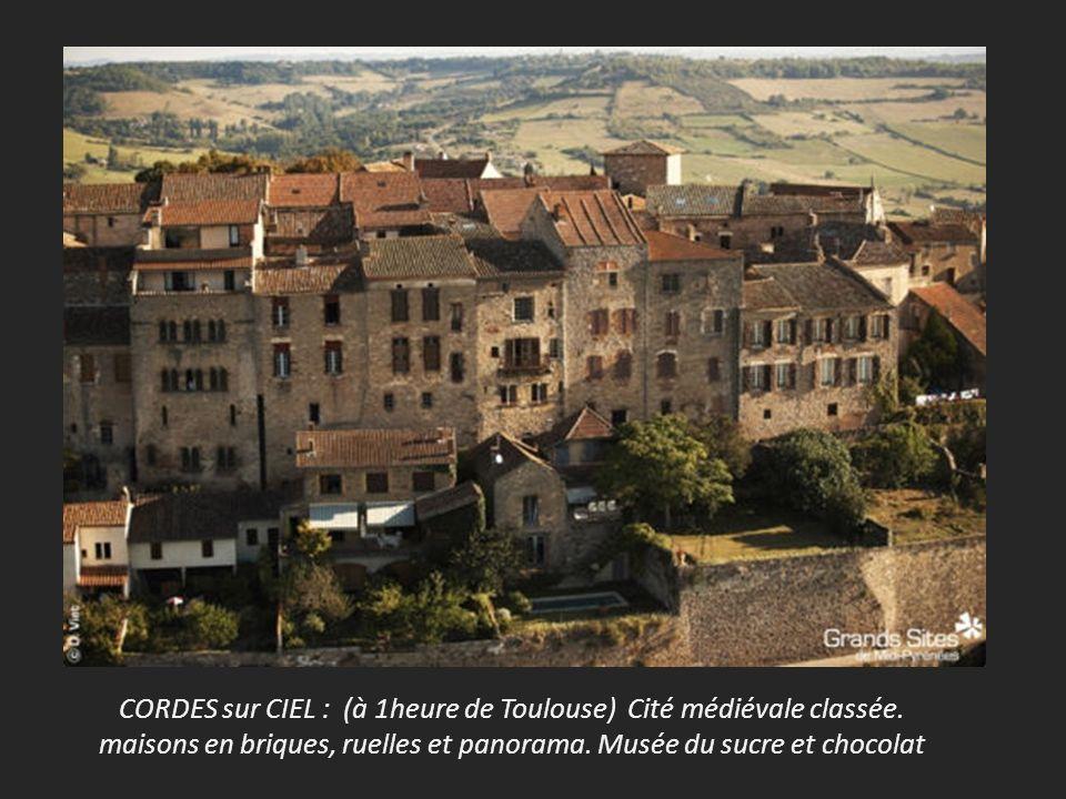 CORDES sur CIEL : (à 1heure de Toulouse) Cité médiévale classée.