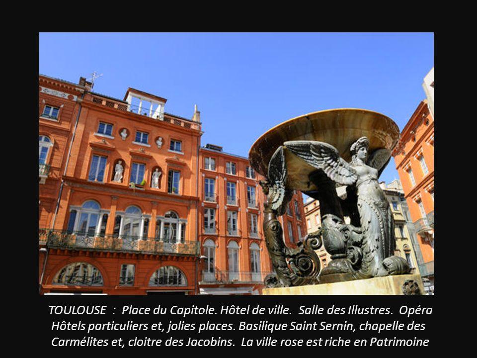 TOULOUSE : Place du Capitole. Hôtel de ville. Salle des Illustres