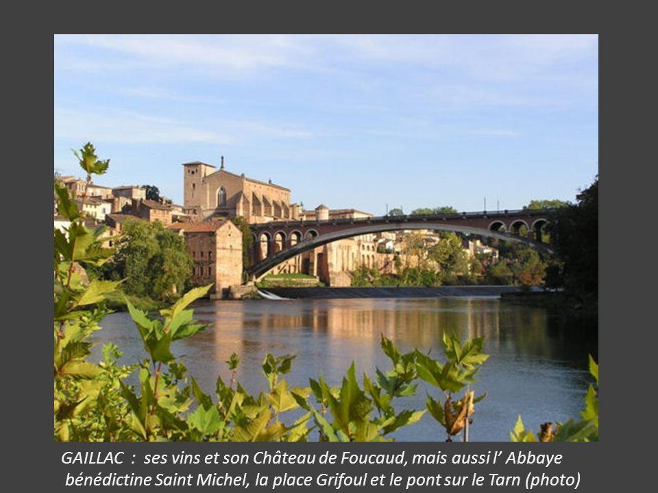 GAILLAC : ses vins et son Château de Foucaud, mais aussi l' Abbaye