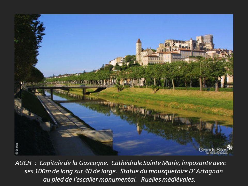AUCH : Capitale de la Gascogne. Cathédrale Sainte Marie, imposante avec
