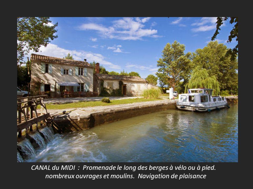 CANAL du MIDI : Promenade le long des berges à vélo ou à pied.